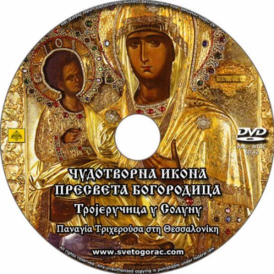 Čudotvorna ikona Presvete Bogorodice (6251)