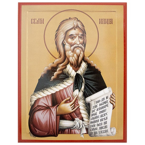 Sveti prorok Ilija  (31.5x24) cm